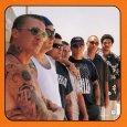 画像3: Long Beach Dub Allstars  / Wonders of the World【日本盤】 (3)