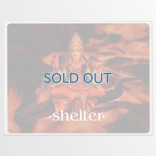 画像1: Shelter / Shelter ステッカー (1)
