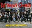 画像1: V.A. / Mild in the Streets: Fat Music Unplugged (1)