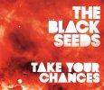 画像1: The Black Seeds / Take Your Chances [EP] (1)