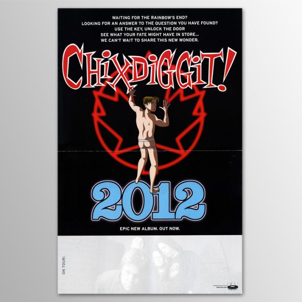 画像1: Chixdiggit! / 2012 (1)