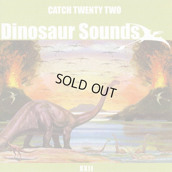 画像1: Catch 22 / Dinosaur Sounds【日本盤】 (1)